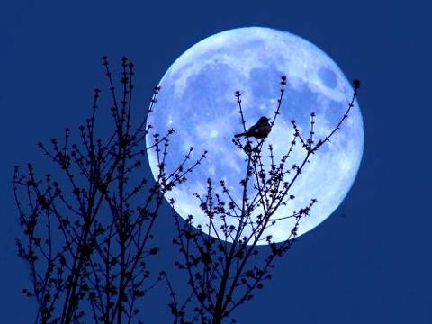 blue moon will grace the night sky tonight (Aug. 31), giving
